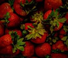 berries3.2