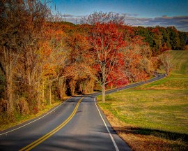 Coes Hill Road