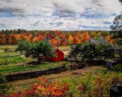 Freeman Farm
