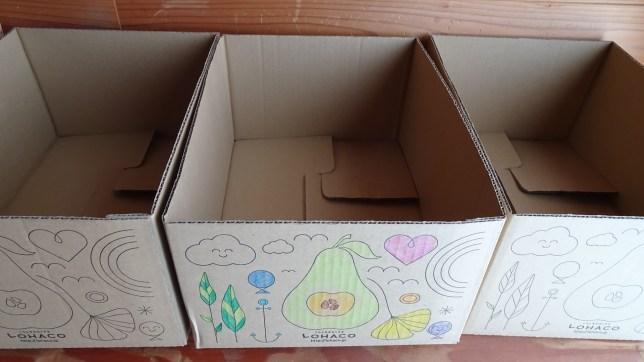 ロハコのダンボール箱(14)