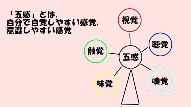 感覚統合について(1)