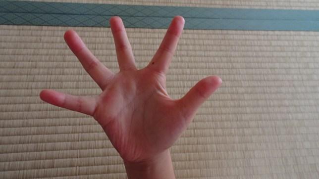 指折りで数字のお勉強(1)