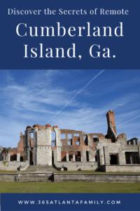 Cumberland Island Ga.
