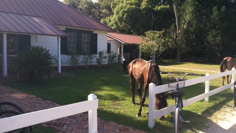 Greyfield Inn, Cumberland Island