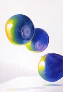 Blueberries by Lake Barrington Artist Gail Collier