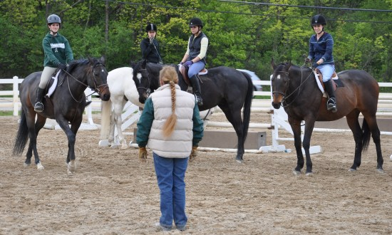 Riding Lesson at Palatine Stables