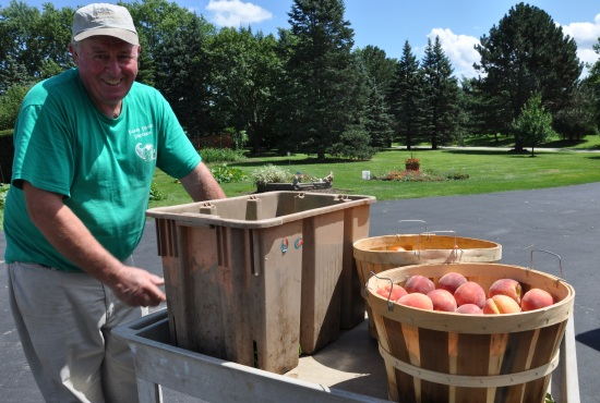 Foley Farmstand Owner, Steven Foley