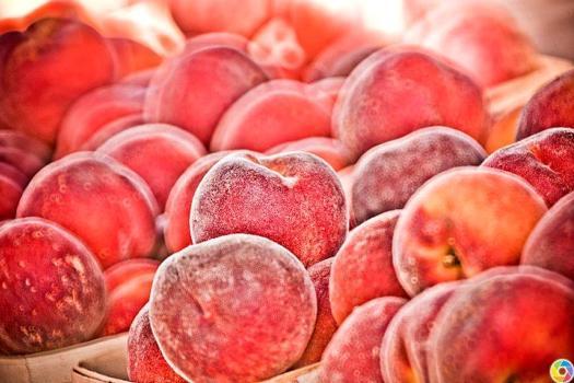 Farmer Wayne Miller and his Peaches at the Barrington Farmers Market