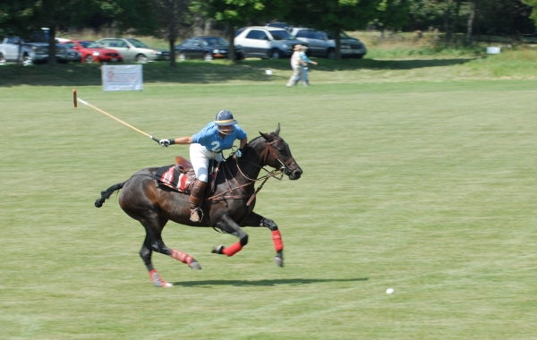 Watching Polo in Barrington Hills