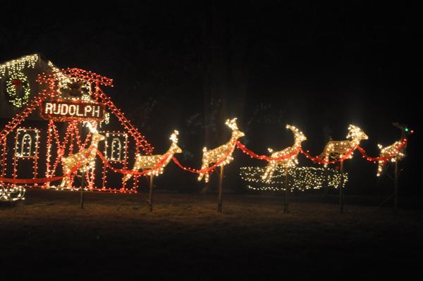 Rudolph and Reindeer Holiday Lights Display