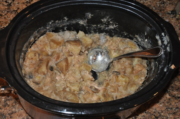Bill's Disgusting Pheasant Stew