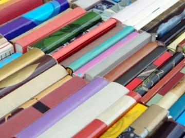 Library Book Sale in Barrington, Illinois