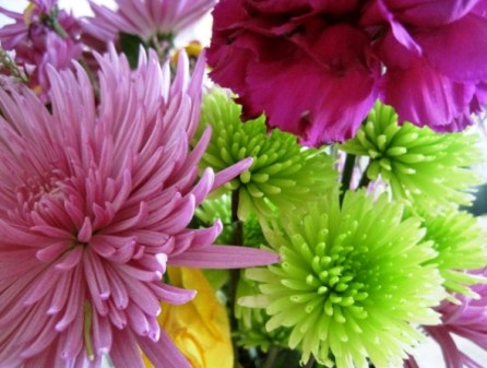 Spring's First Bouquet photo by Barrington Resident, Kelly Stickney