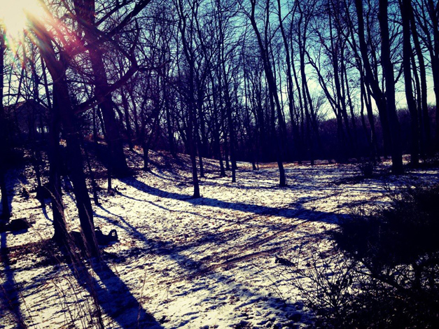 A Winter Walk in Barrington, Photographed by Barrington-Area Artist, Janet Mamon