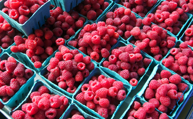 Post - More Raspberries Please