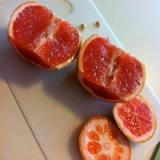 BOB - Grapefruit Step 2