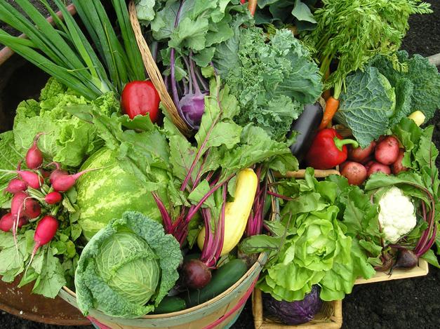 Smart Farm Veggies - Courtesy of Smart Farm
