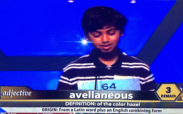 Pranav Sivakumar Correctly Spells Avellaneous in the Scripps National Spelling Bee