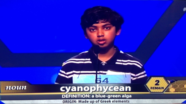 Pranav Sivakumar in Scripps National Spelling Bee 15th Round