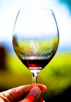 Post 300 - Red Wine Closeup