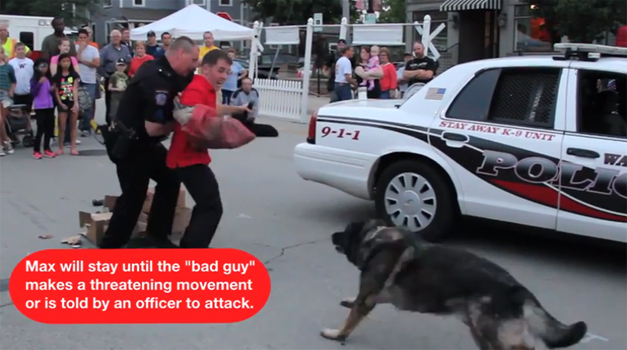 National Night Out Canine Demo