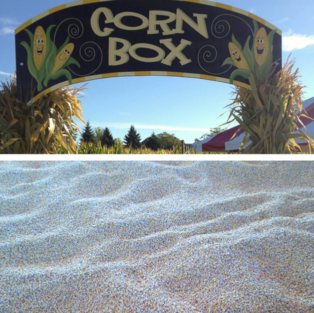 New Corn Box at Goebbert's Fall Festival