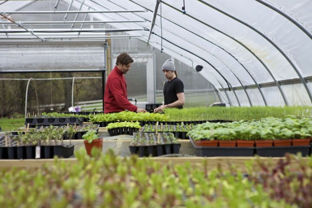 Dominic and employee Scott Speer discuss the next wave of transplanting - Photographed by Julie Linnekin