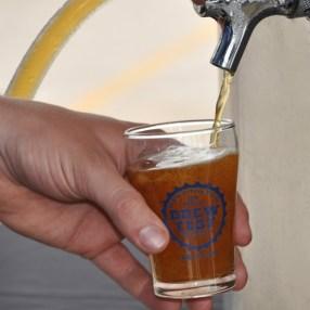 Post - Barrington Brew Fest 2014 - Photo by Liz Luby for 365Barrington - 73