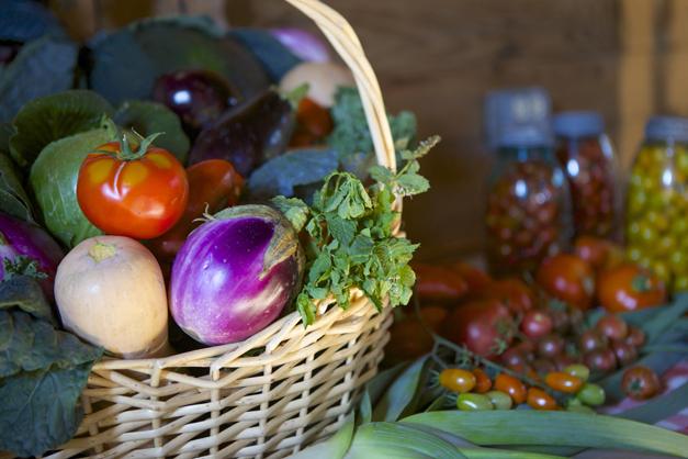 Post - Farm to Table Dinner with Barrington Smart Farm - 4