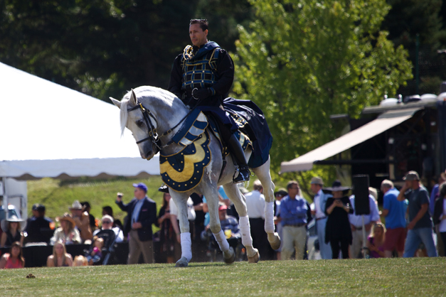 Medieval Times Knights t host a Jousting Competition at the LeCompte/Kalaway Landowners Cup in Barrington Hills - Photographed by Julie Linnekin