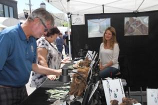 Post - Barrington Art Festival 2015 - 38