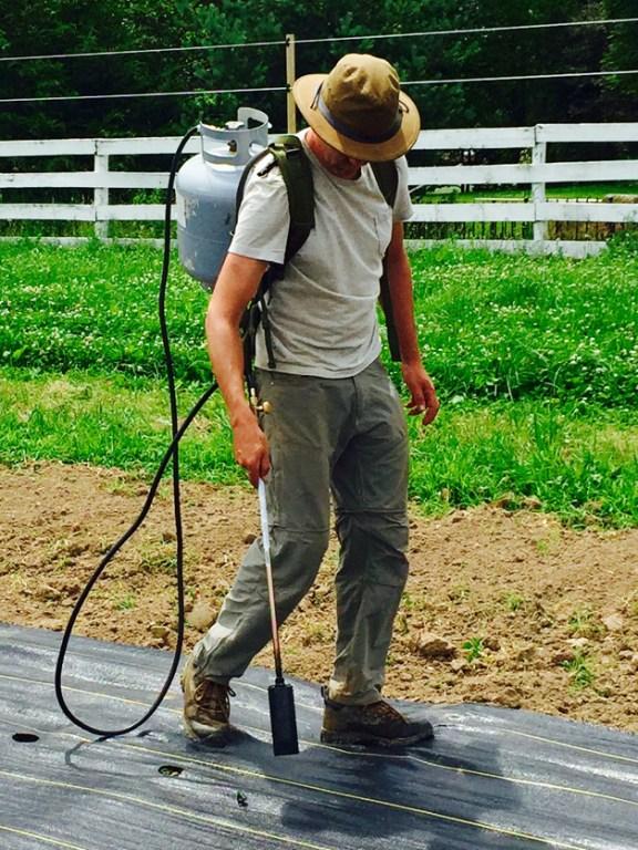Post - Gentleman Farmer 2015 - 7