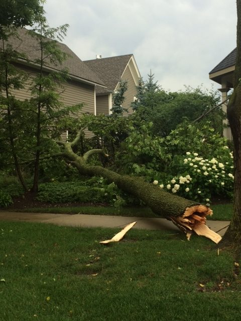 Village of Barrington Storm Damage - 1