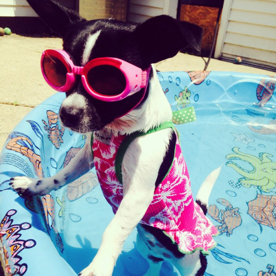 Minnie: Submitted by Janine McCalpin