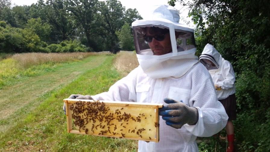 Post - The Gentleman Farmer - Honey Harvest - 5