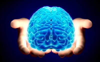 278. Barrington Health: Does Marijuana Change the Brain?