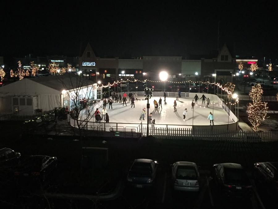 Post - Arboretum Ice Skating Rink - 14
