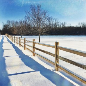 NoonDaily - Embracing Grace Photography - Snowy Scene