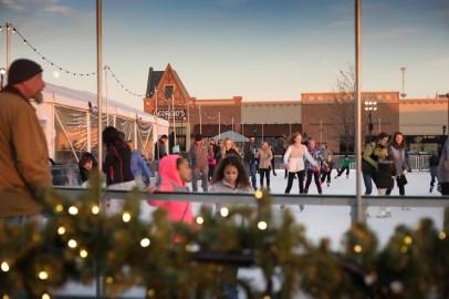 365 - Arboretum on Ice Rink - 2
