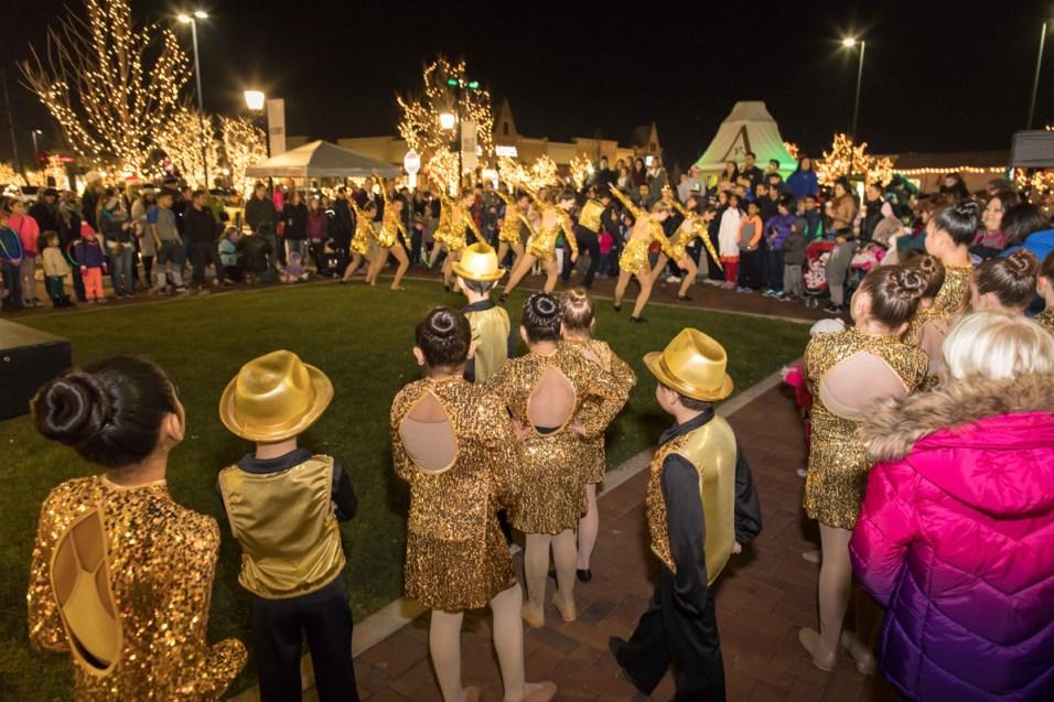 365 - Arborebum of South Barrington Holiday Festival - 2