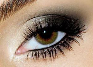 Lancôme Color Design Sensational Effects Smooth Hold Eye Shadow Smoky Makeup