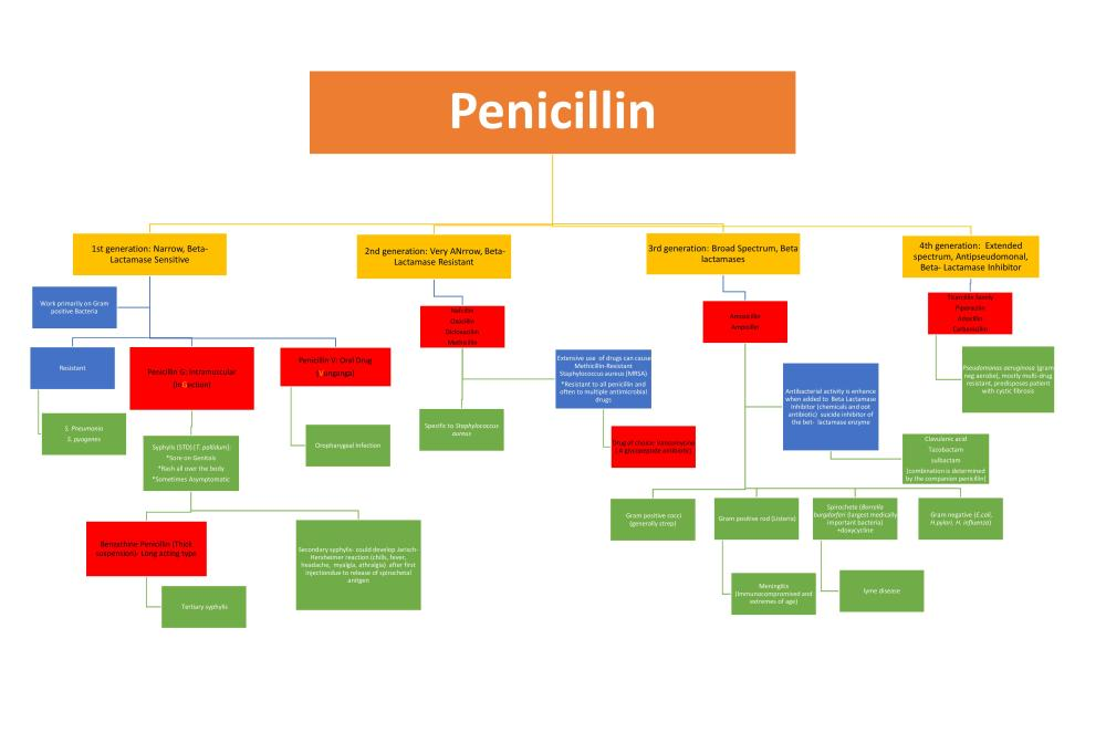 Cell wall inhibitor Antibiotic Flowchart (1/3)