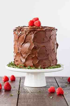 chocolate_raspberry_cake-9