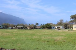 The town of Kalaupapa.