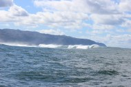 Large ocean swells. They were ridiculous!