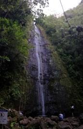 Manoa Falls!