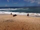 Sisters admiring the ocean.