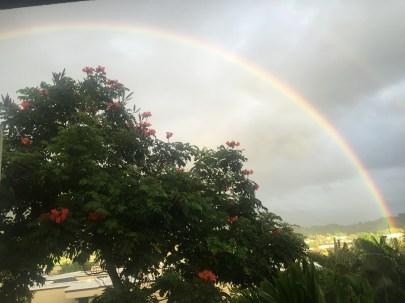 More rainbows.