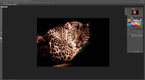 program to fix photos