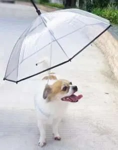 dog gifts, Dog Umbrella with Leash